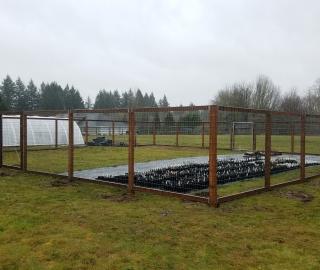 residential garden fence